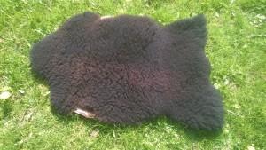 Garvede lamme- og fåre- skind sælges. Skriv og forhør om priser.