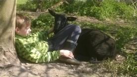 Violet og Andreas der ligger og hygger under trækronerne maj 2015
